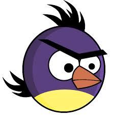 purple angry bird